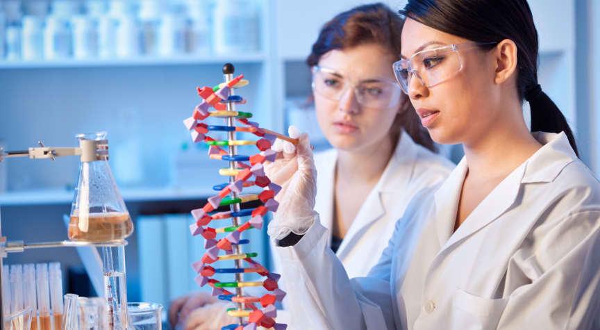 Should You Major in Biology?