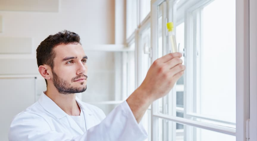 What to Expect in an Online Science Lab Course