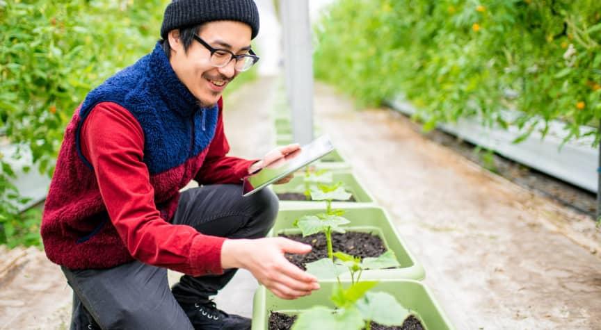 Today's In-Demand Green Jobs