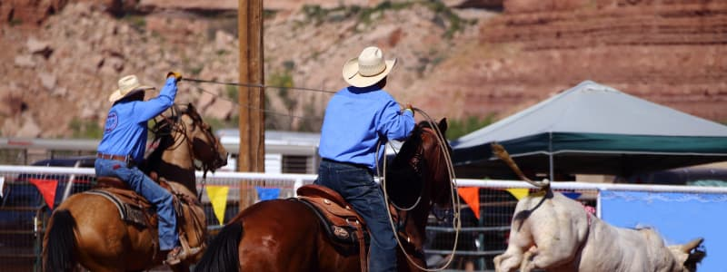 The 10 Best College Rodeo Teams Across The Country