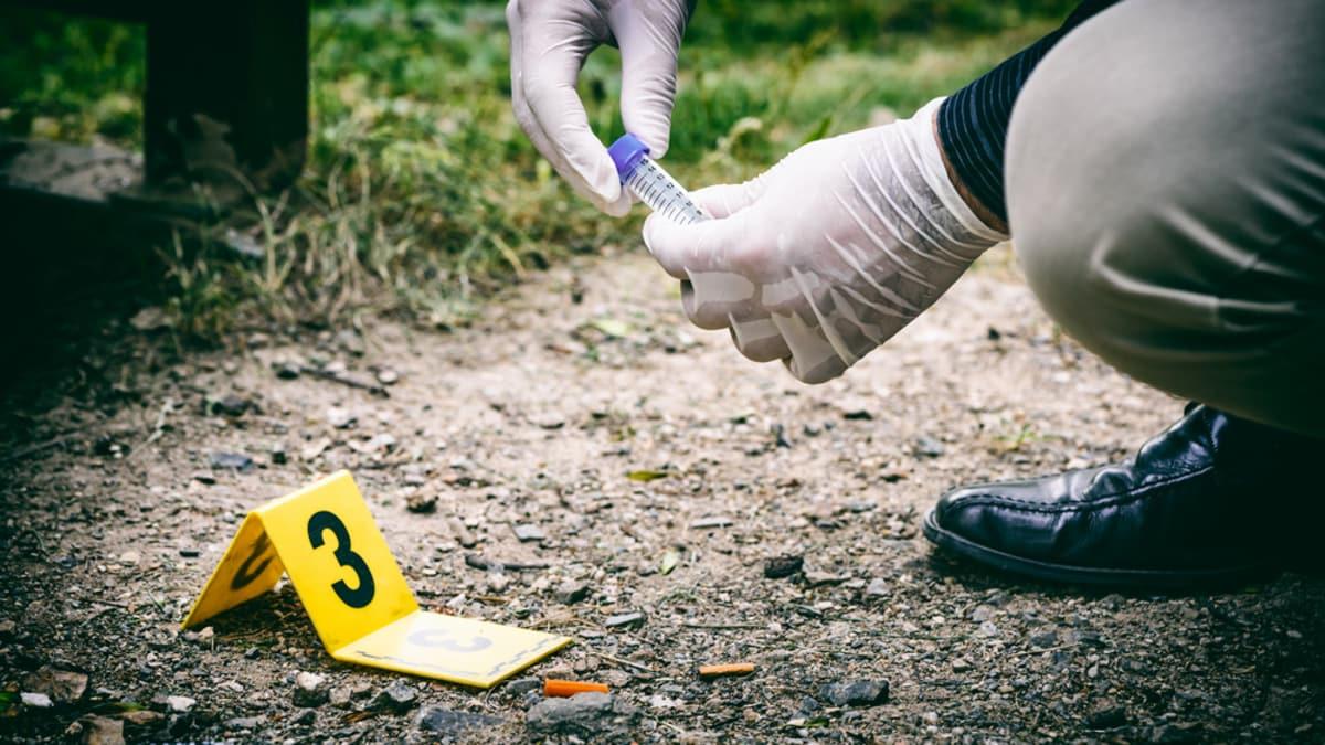 Best Online Master\'s in Crime Scene Investigation Programs for 2019