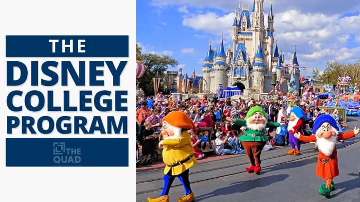 Disney Internships Summer 2020.The Disney College Program The Quad Magazine