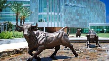 Campus Image: University of South Florida