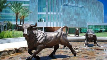 Usf Masters Programs >> The 25 Best Master of Social Work (MSW) Online Degree Programs
