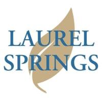 Image of Laurel Springs Online High School logo