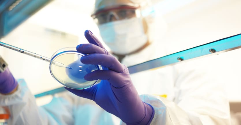 A scientist in protective gea rhandles a petri dish under a chemical hood.