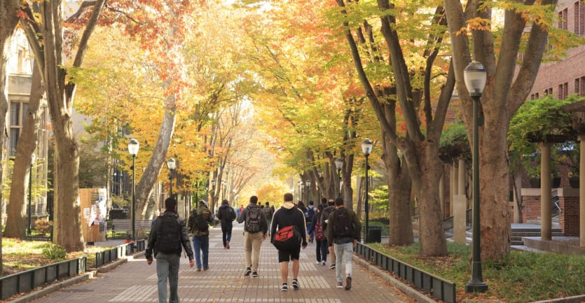 A group of students walks down a brick pathway on a college campus in autumn.