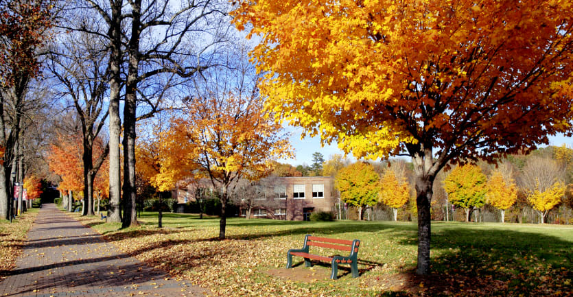 An empty field bordered by trees covered in fall foliage abuts an academic building on a college campus.