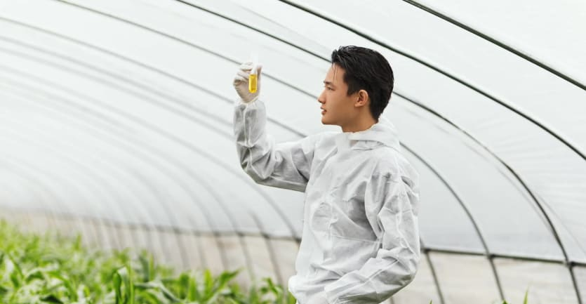 A man in a white lab coat stands in a brightly lit greenhouse and examines a test-tube filled with a yellow solution.