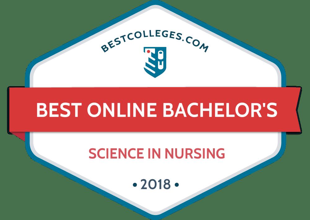 The Best Online Bsn Programs Of 2018