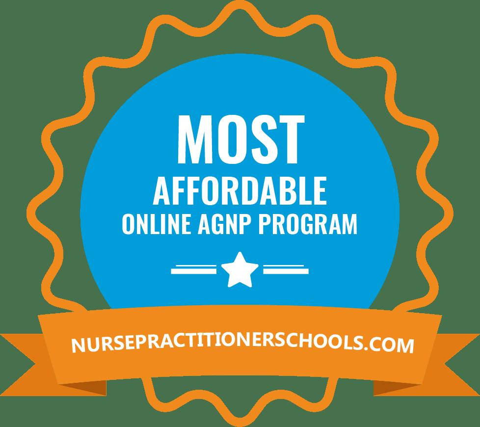 Online Adult-Gerontology Nurse Practitioner Programs (AGNP