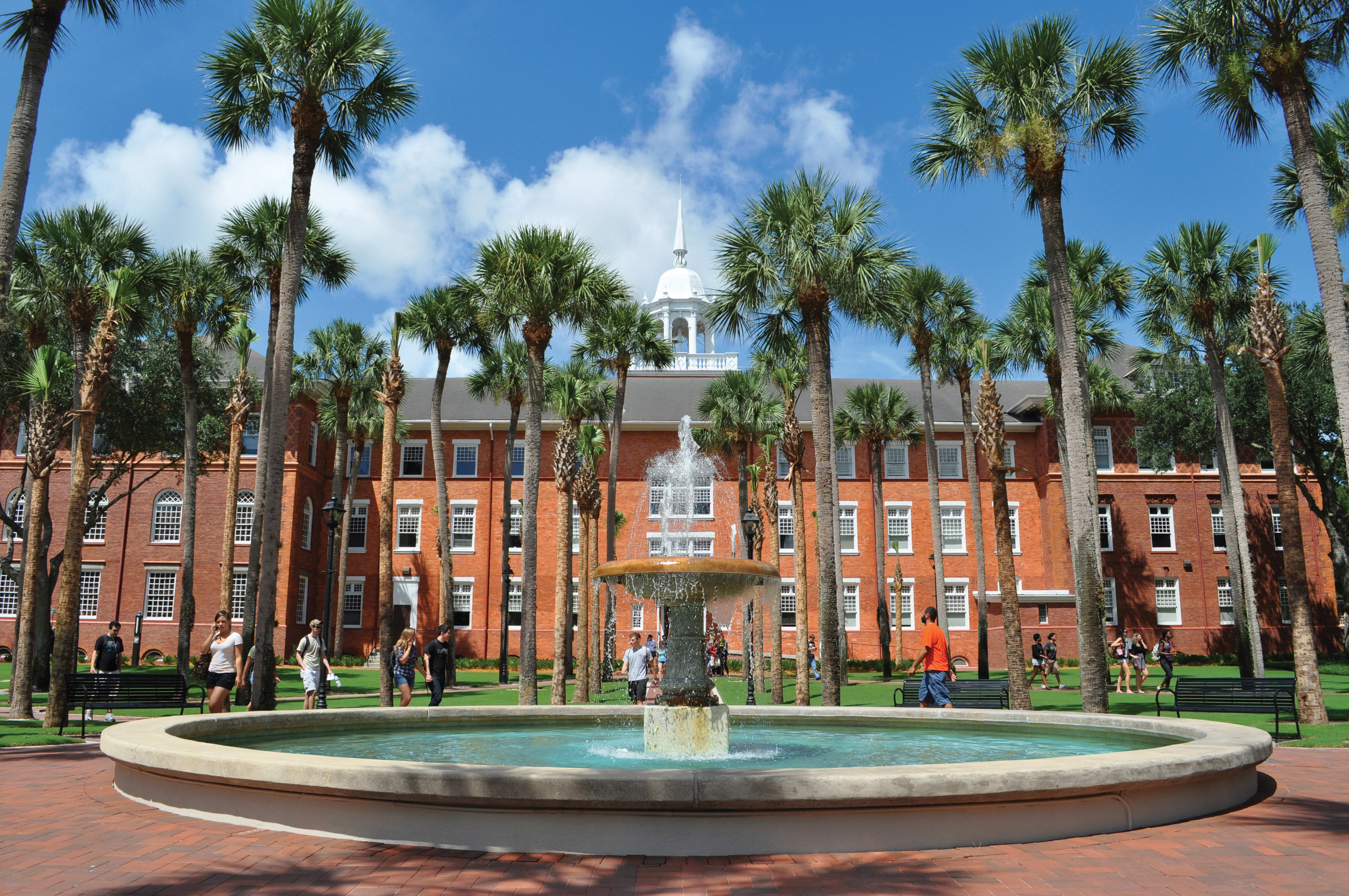 stetson-university-online-masters-accounting