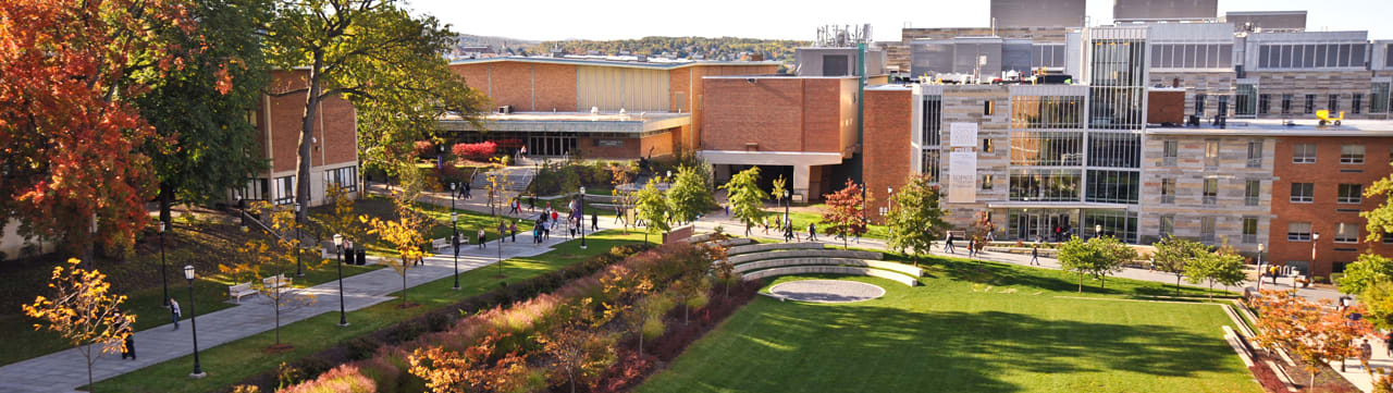 the-university-of-scranton-online-masters-accounting