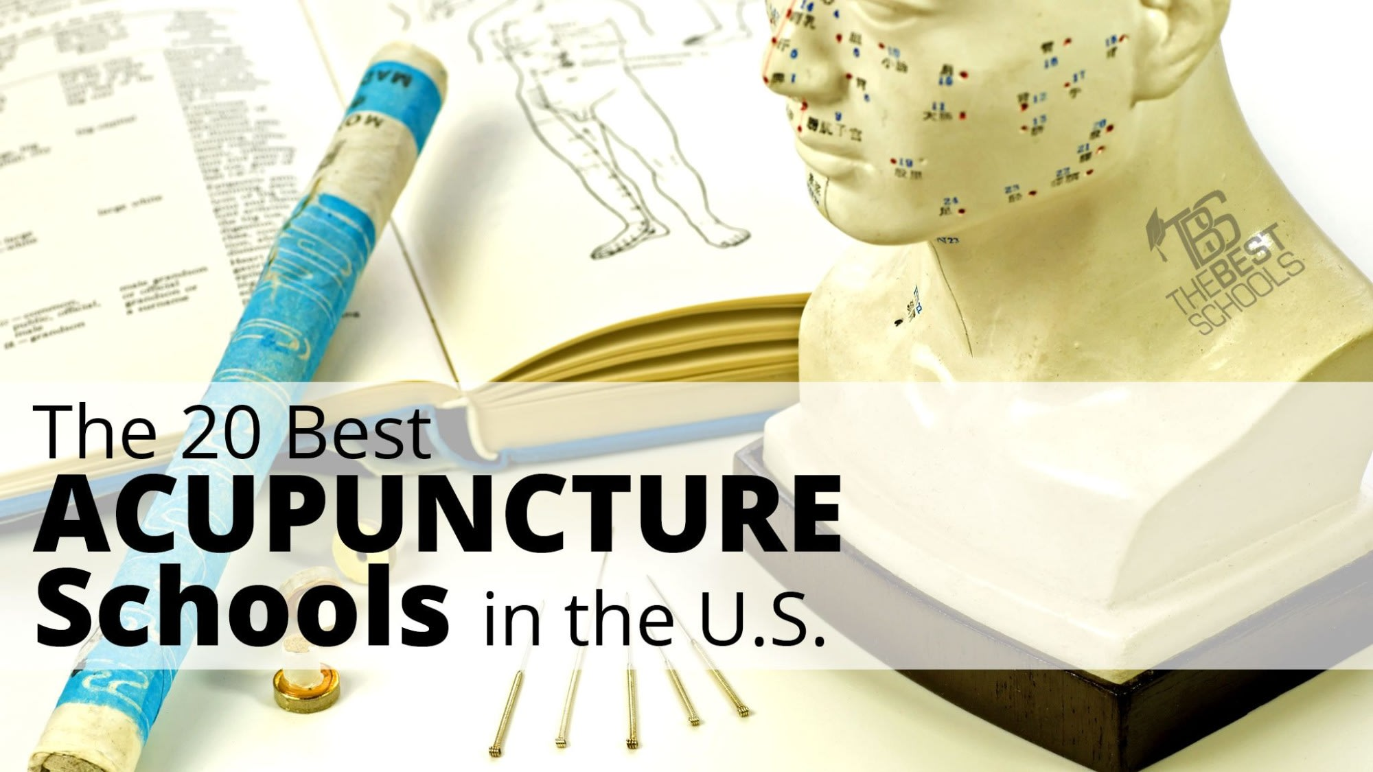 The 20 Best Acupuncture Schools in the U S  | TheBestSchools org