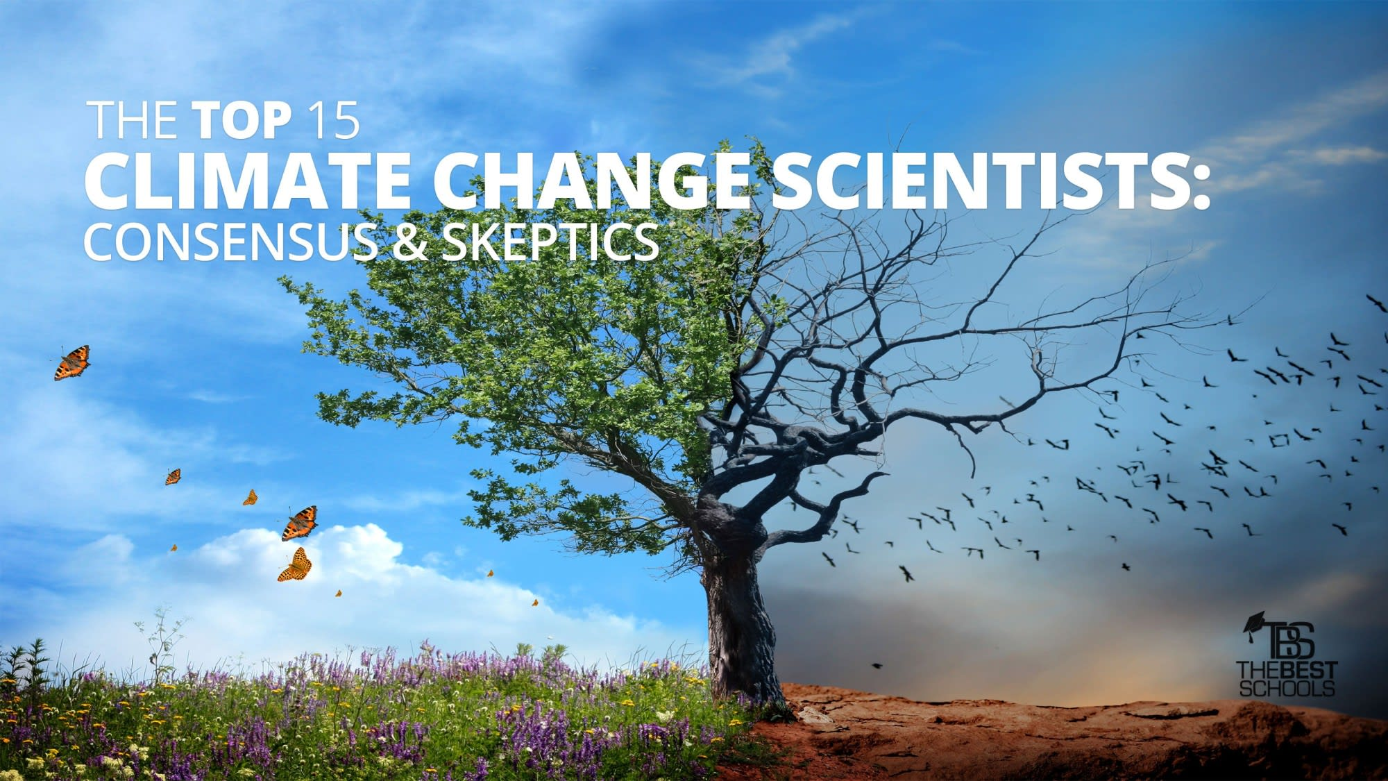 The Top 15 Climate-Change Scientists: Consensus &