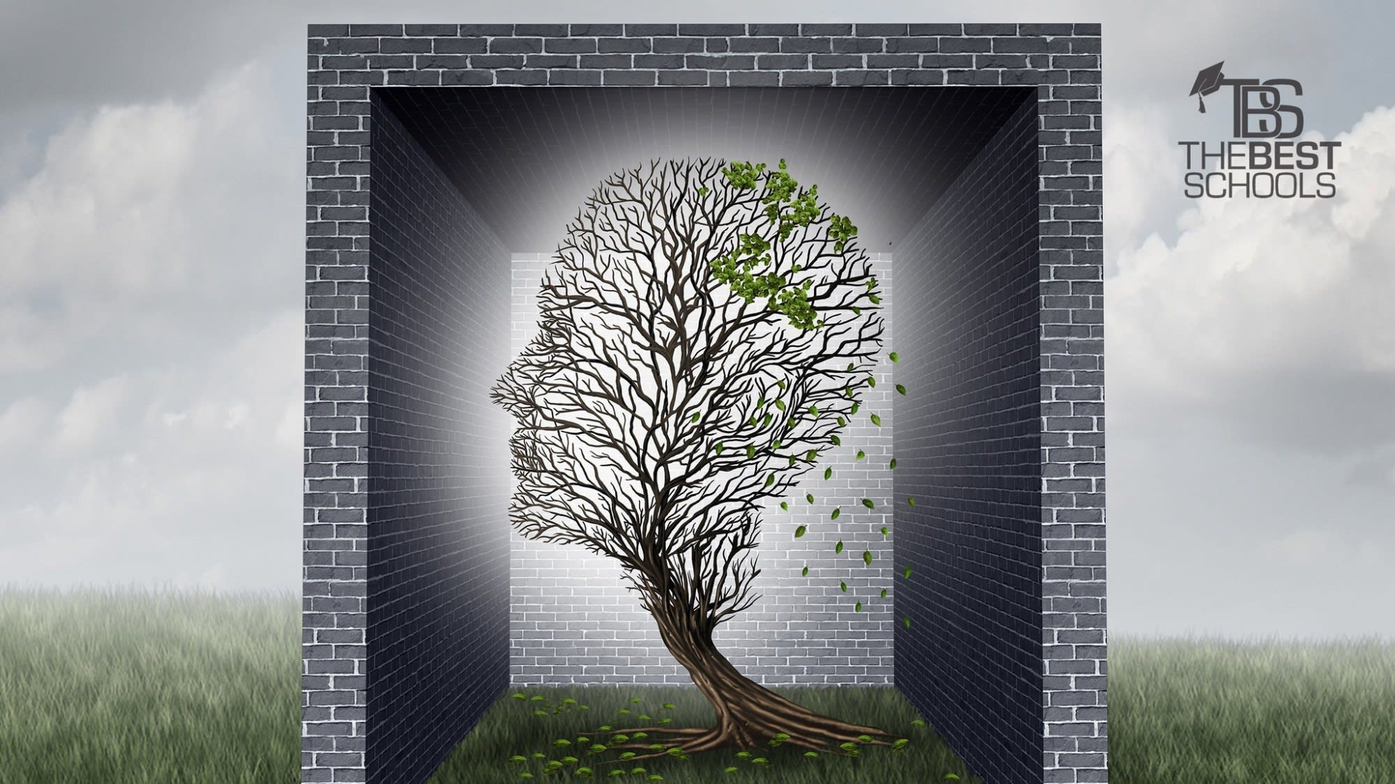 The 30 Best Online Master S In Psychology Degree Programs