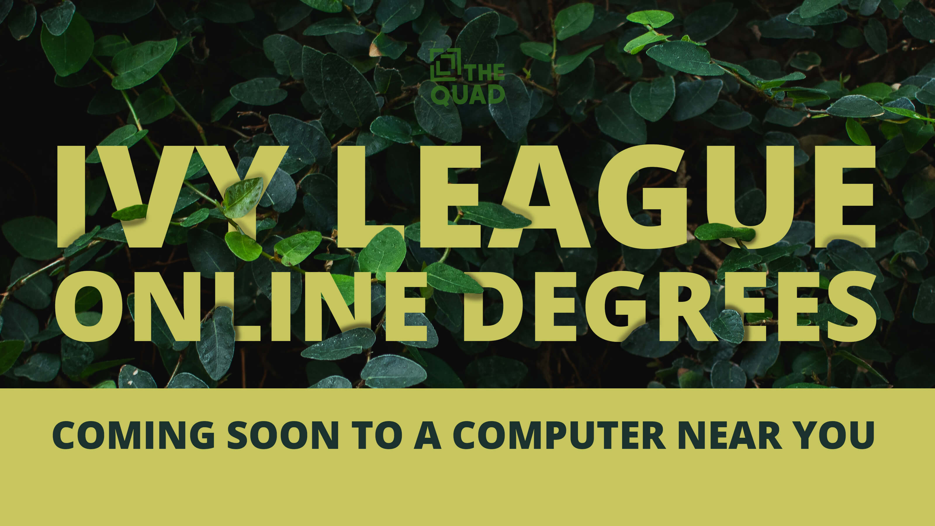 Ivy League Online Degrees   Coming Soon to a Computer Near You   The