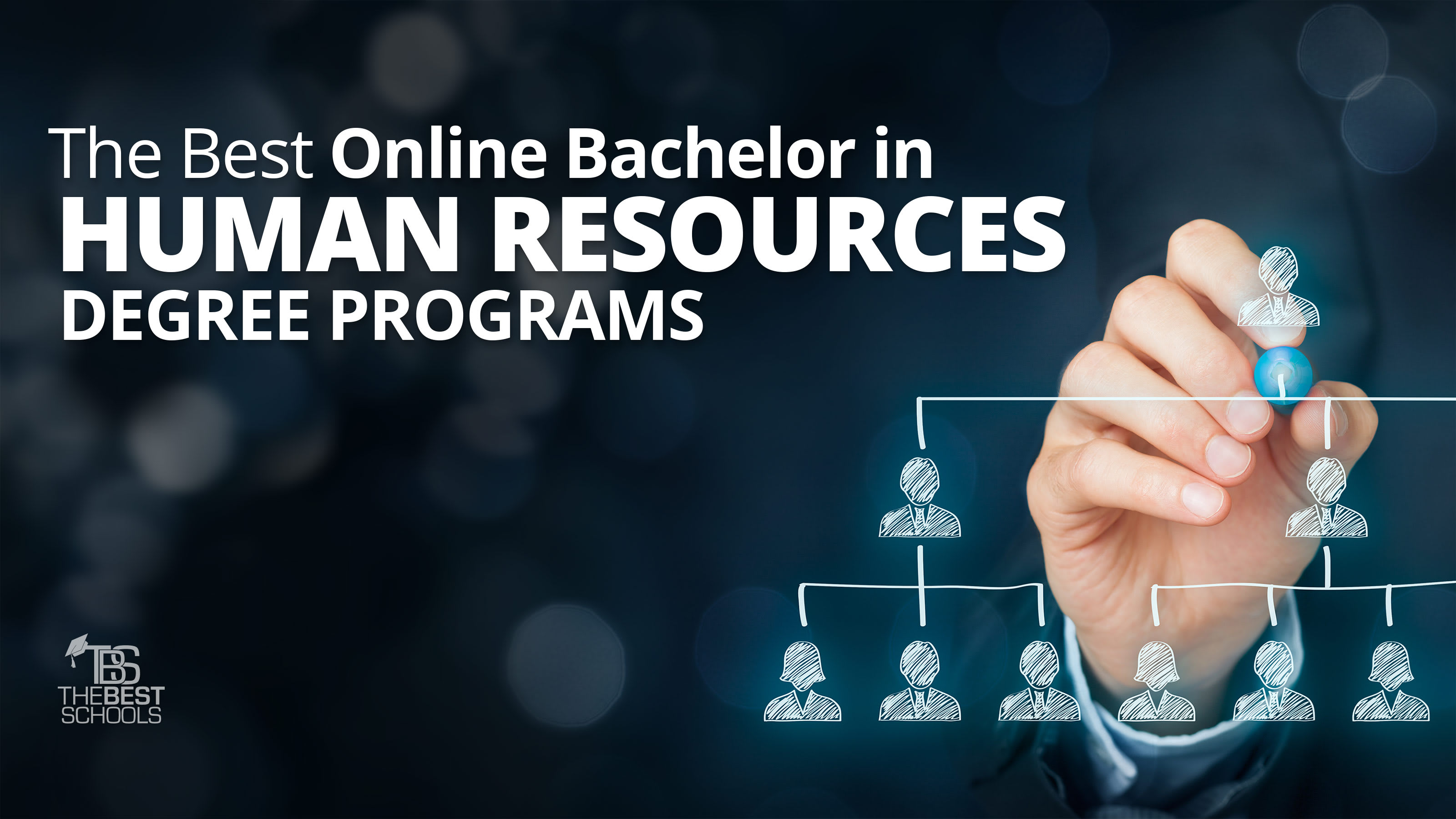 The Best Online Bachelor in Human Resources Degree Programs