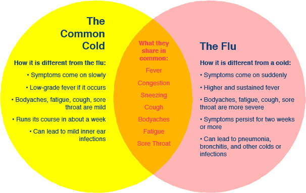 Illustration of the common cold vs the flu