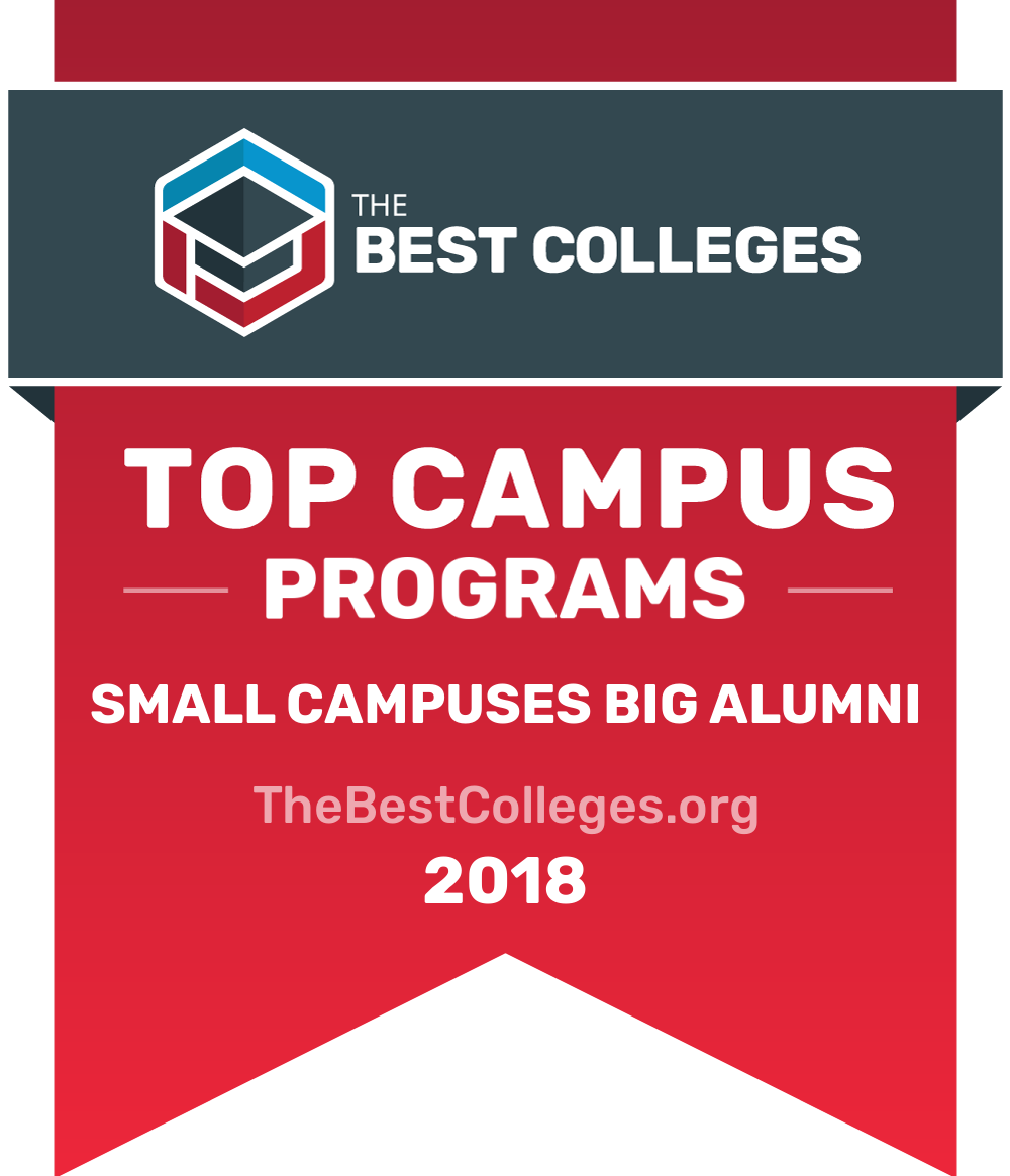 Small Campuses with Big Alumni