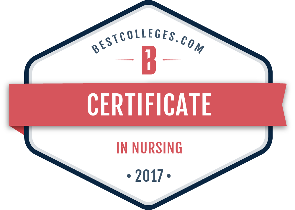 The Best Online Certificate In Nursing Programs Of 2017