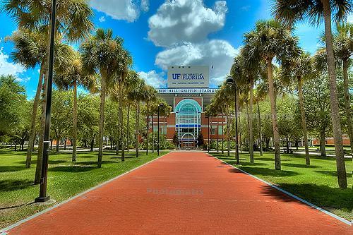 University of Florida Online Bachelor of Arts in Psychology