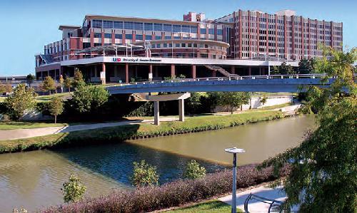 University of Houston-Downtown Online B.S. in Psychology
