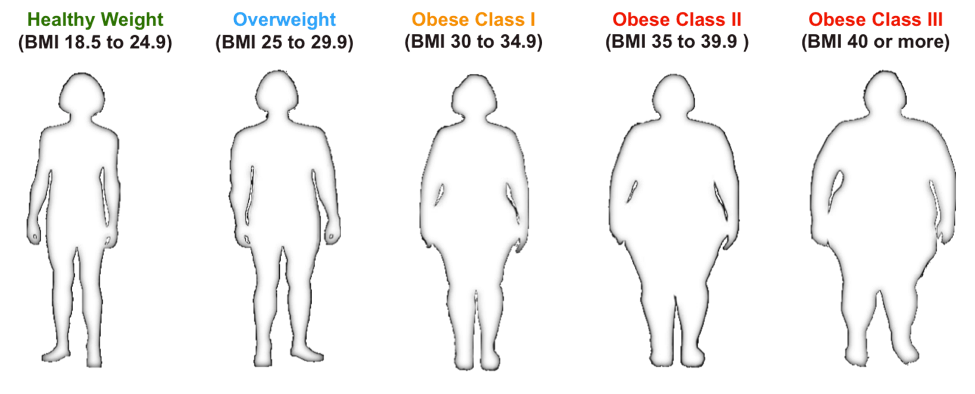 BMI for healthy to obese individuals