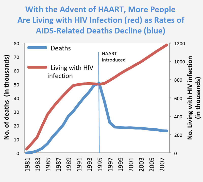 Image via the National Institute on Drug Abuse. While the number of HIV infections continues to climb, the development of highly active antiretroviral therapy (HAART) has significantly reduced the rate of AIDS-related deaths in the United States.