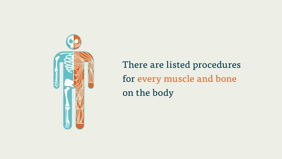 CPC Exam: The Musculoskeletal System