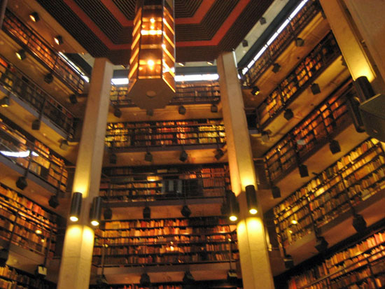 Best Libraries In The World Ranking The Top 35