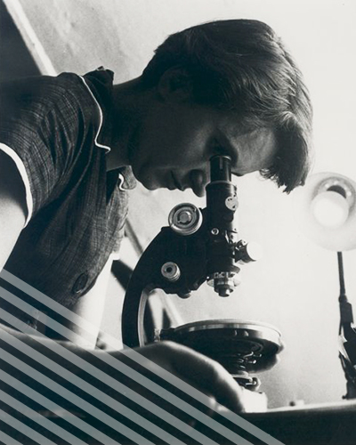 A young Rosalind Franklin, wearing a short bob and a collared short-sleeved shirt, peers down into a microscope.