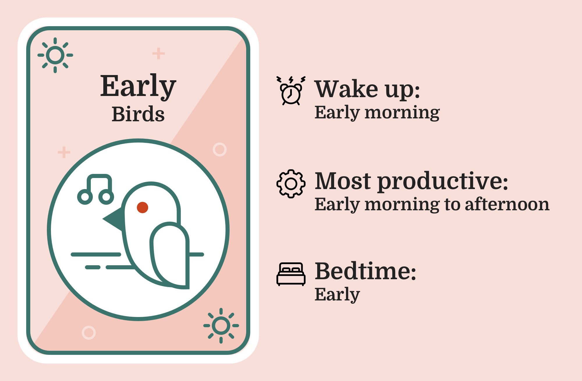 Image of a bird with the caption 'Early Bird'