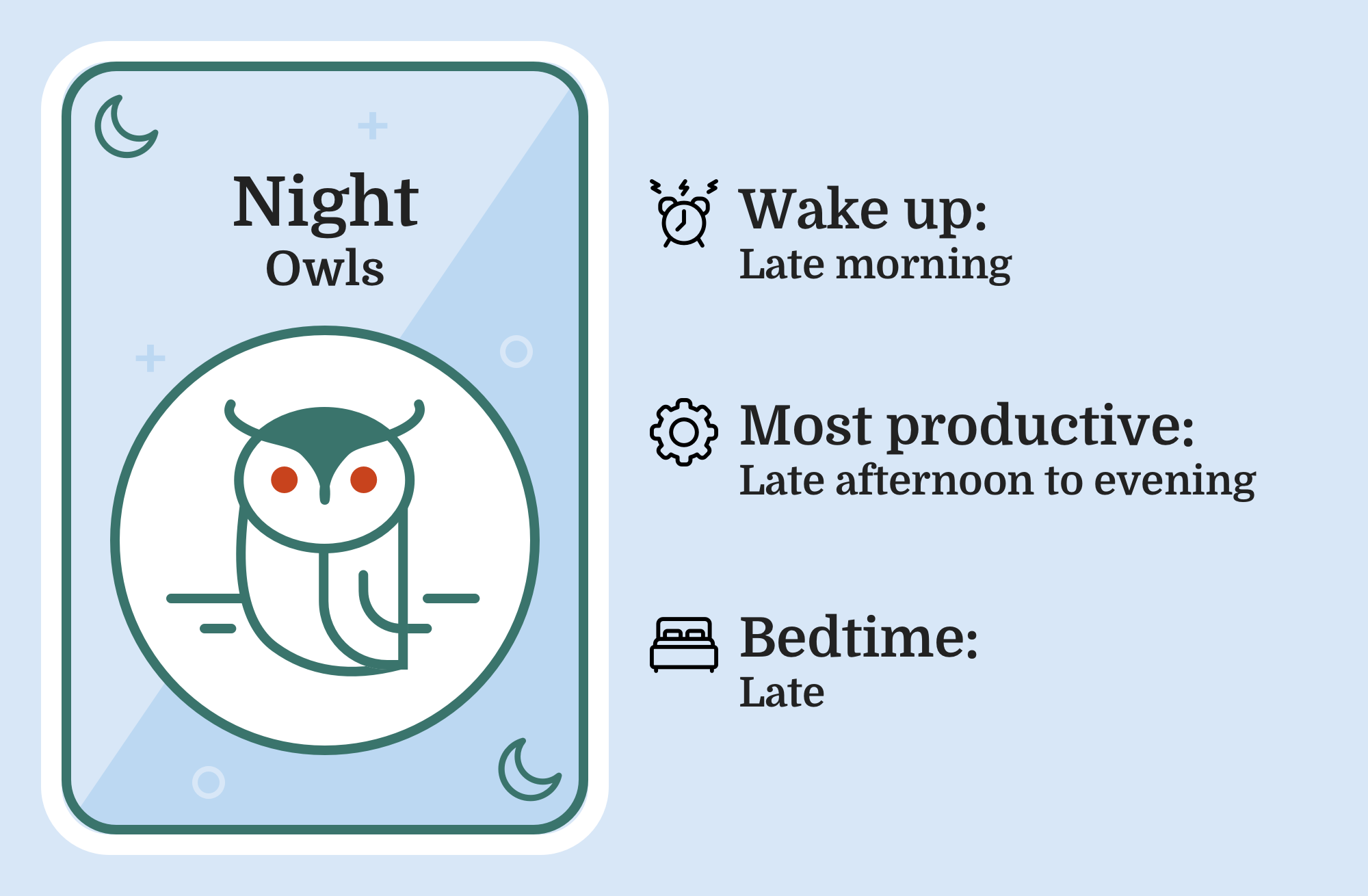 Image of an owl with the caption 'Night Owl'