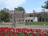 University of Memphis