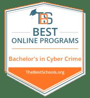 Top Online Bachelor's in Cybercrime Degree Programs Badge