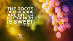 "Image #53: ""The roots of education are bitter, but the fruit is sweet.""Aristotle Quote"