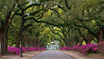 Spring Hill College Mobile Alabama