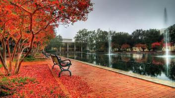 University of South Carolina-Columbia, Palmetto College, Beaufort, South Carolina