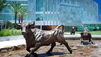 University of South Florida, Tampa, Florida