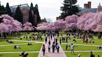 University of Washington, Seattle, Washington.