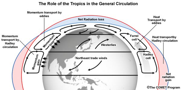 Role of Tropics in General Circulation