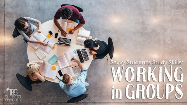 Savvy Student's Study Skills: Working in Groups