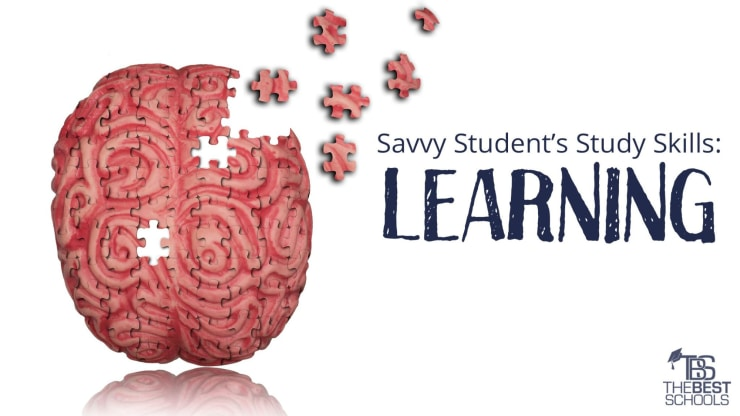 Savvy Student S Study Skills Learning