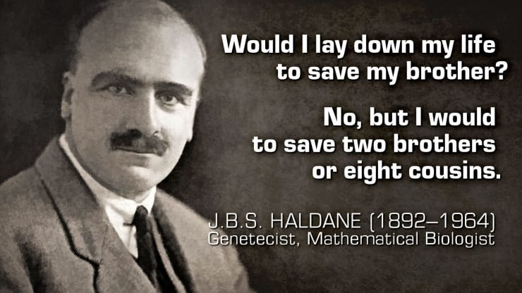 """""""Would I lay down my life to save my brother? No, but I would to save two brothers or eight cousins."""" — JBS Haldane"""