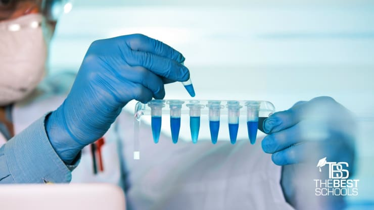 masters in biomedical engineering requirements
