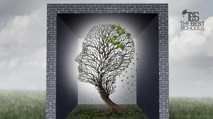 The 30 Best Online Master's in Psychology Degree Programs