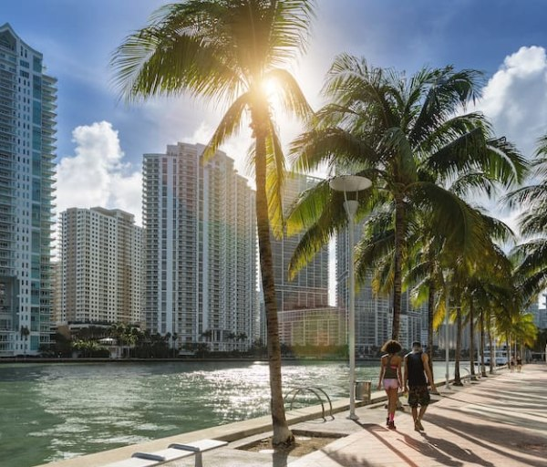 The Best Florida Online Nurse Practitioner Programs
