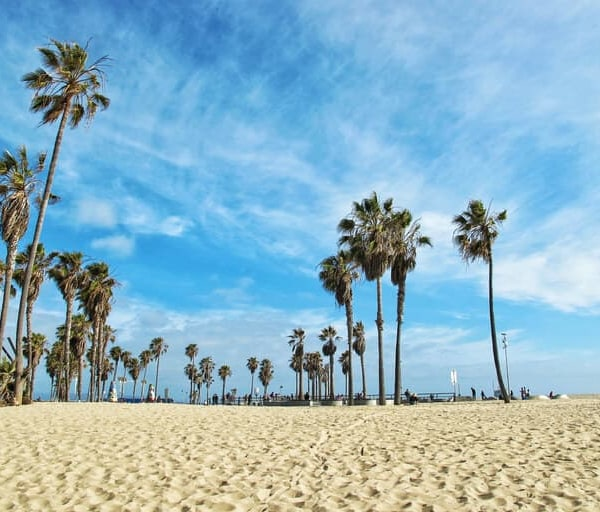 Become a Nurse in California: Requirements, Licensing, and Employment Outlook