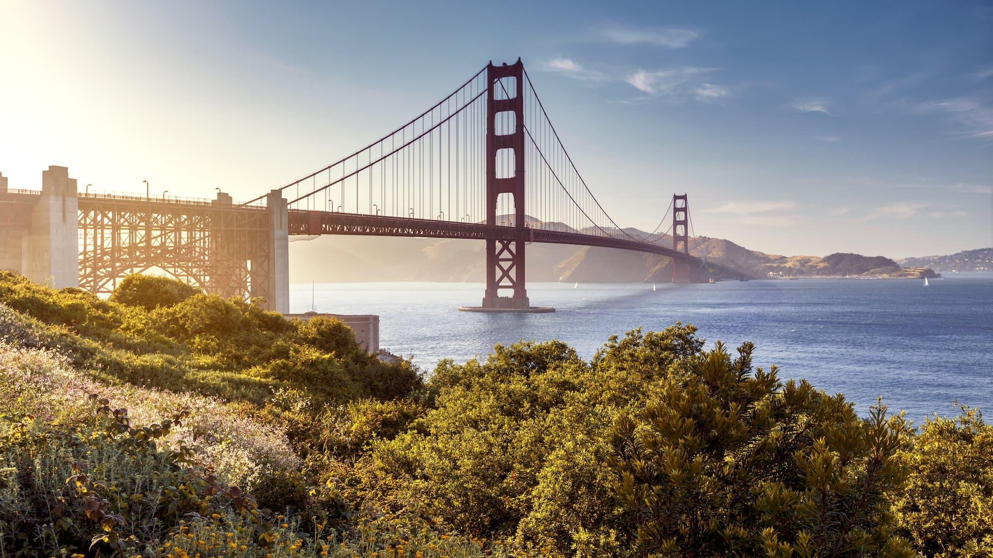 Hero Image Online Psychology Degree Programs in California